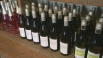Winery operators not concerned a brief B.C. wine ban imposed by Alberta earlier this year will have any impact on this year's Okanagan Spring Wine Festival.
