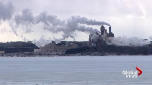 N.S. asks for more study of mill's contentious wastewater pipeline