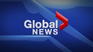 Global News at 11 Edmonton: May 10