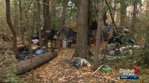 City cleaned up 1,600 homeless camps in Edmonton River Valley