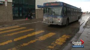 Public input wanted on Edmonton bus route changes