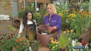 Gardenworks: Fall inspiration