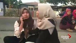 Indonesia copes with deadly earthquake and tsunami