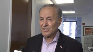 Schumer says Trump should install a federal czar to oversee reunification process of separated families