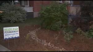 GreenUP installs rain gardens to address flooding in Peterborough
