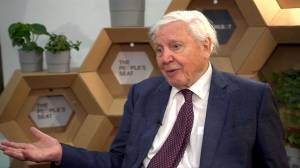 Naturalist David Attenborough says U.S. 'out on a limb' on climate