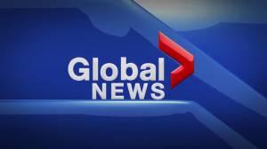 Global News at 5 Edmonton: Aug. 8