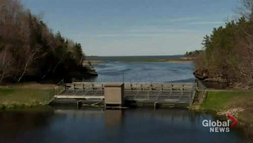 Federal government puts $100M towards remediation of Boat Harbour