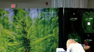 HempFest Expo has Saskatoon residents curious for cannabis