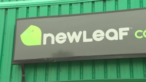 Lethbridge's first cannabis retail store to open Saturday
