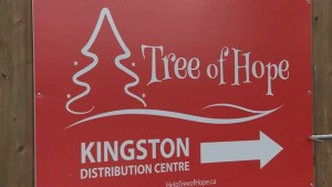 Tree of Hope campaign short on monetary donations