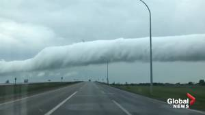 Driver records ominous 'roll cloud' forming over Osler, Sask.