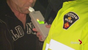 1 in 4 Canadians admit to impaired driving