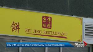 Toronto mother says son with service dog denied entry to 2 restaurants (02:05)