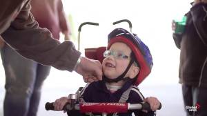 Stollery's 'In My Backyard' Campaign