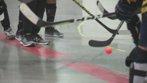 Year-long ball hockey picks up speed in Edmonton