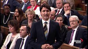 Opposition Leader asks Prime Minister why there's delay in Canadian tariffs taking effect
