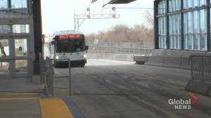 Winnipeg bus riders react to Osborne BRT station attack