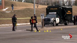 Calgary police rule out speed, alcohol in pedestrian deaths
