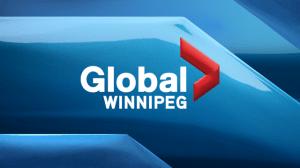 Manitoba Moose Pascal Vincent On Michael Hutchinson