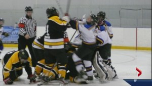 Charges laid after minor league hockey fight