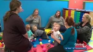 Edmonton in the midst of minor baby boom