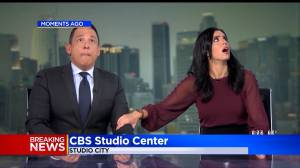 Los Angeles news anchors react to 7.1 earthquake live on-air