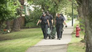 Black bear spotted in East Vancouver