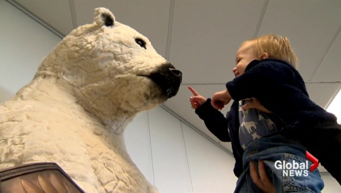 Calgary teen's life-size polar bear statue greets library patrons: 'It's so cool!'