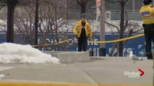 Downtown Toronto tourist hot-spot remains closed and off limits to visitors on account of falling ice