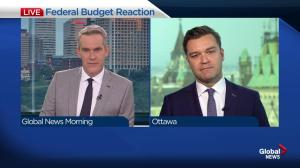 Conservative MP Matt Jeneroux criticizes 2019 federal budget