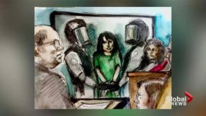 Toronto woman facing terror charges ordered mental health assessment