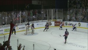 Lethbridge Hurricanes proving they can be financially viable
