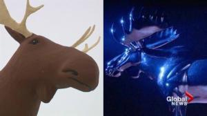 Norwegian musicians release 'Moose Truce' in battle of world's tallest moose