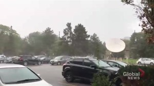 Heavy rains, winds hit Toronto after severe thunderstorm warning issued