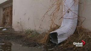 Quick snow melt could cause basement and street flooding in Lethbridge
