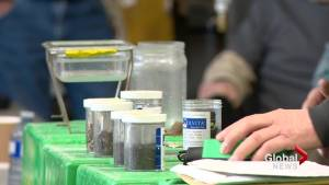 Southern Alberta farmers learn about soil health to improve crop quality