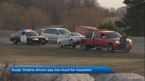 Ontario drivers overpaying on car insurance as company profits soar