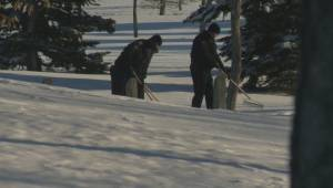 Police persistence leads to new developments in Calgary cold case (01:46)