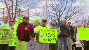 Lyme disease sufferers advocate for better treatment