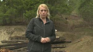 Logging concerns in Salmon Arm