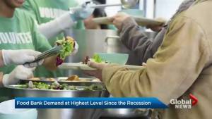 Daily Bread Food Bank says usage has spiked to levels above those seen during last recession