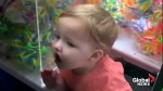 Alabama 2-year-old gets stuck in 'Claw' toy machine