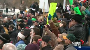 Farmers protest legislature to kill farm safety Bill 6
