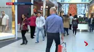 Toronto Black Friday bargain hunters flock to shopping centres