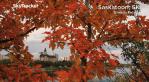 Saskatoon weather outlook: warmest week of October, winds pick up