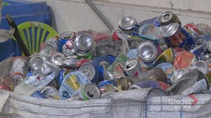 No plans for Fredericton to provide curbside recycling to apartment buildings