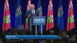 Ontario premier joins forces with UCP leader at anti-carbon tax rally