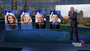 The Ontario PC leadership race