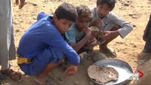 Yemen on brink of famine, health workers plead for help